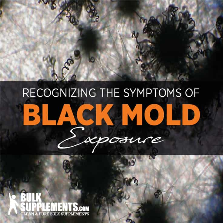 Black Mold Exposure Symptoms Diagnosis Treatment Prevention