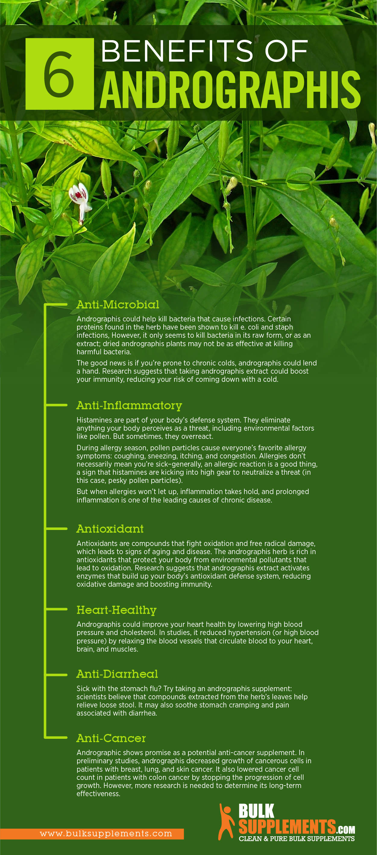 andrographis benefits