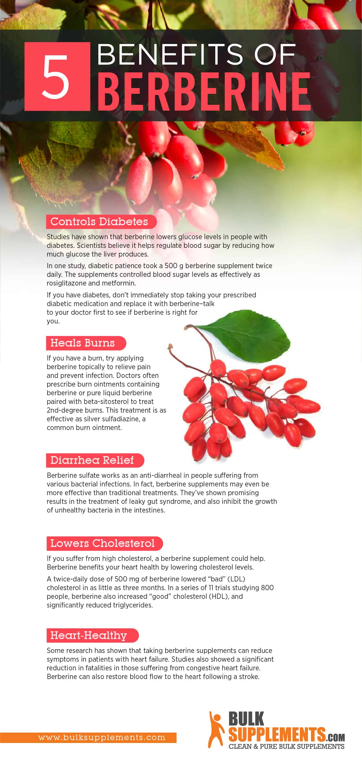 berberine benefits