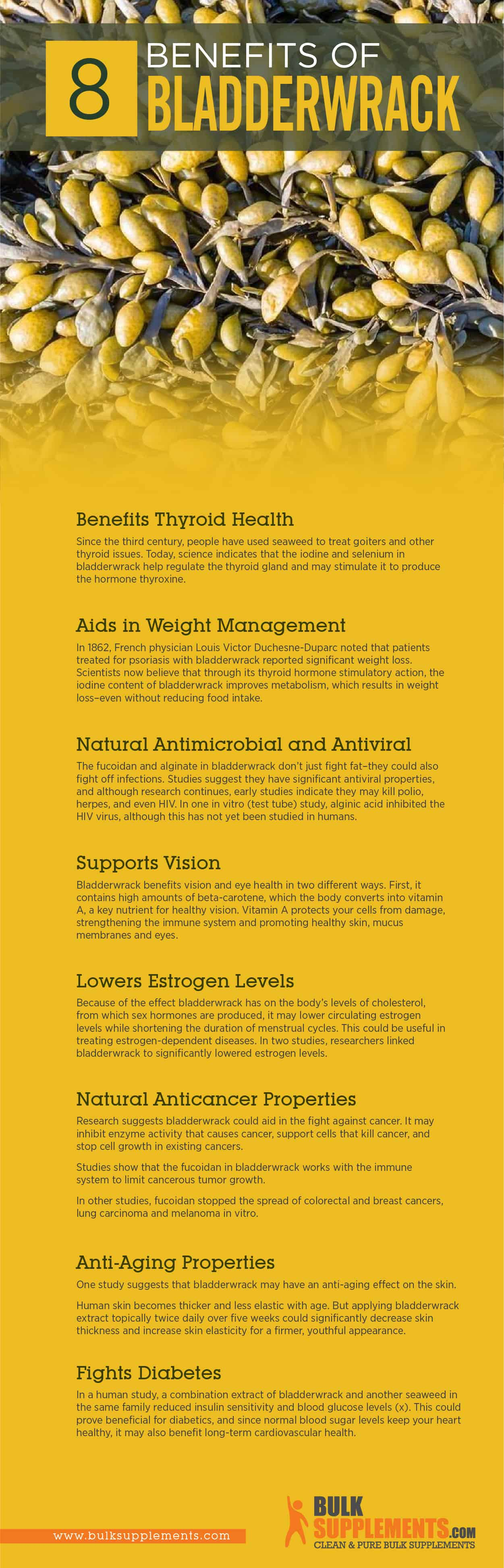 Bladderwrack Benefits, Side Effects and Dosage