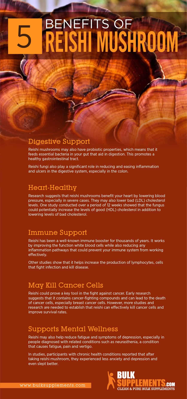 Reishi Mushroom Extract Benefits, Side Effects & Dosage