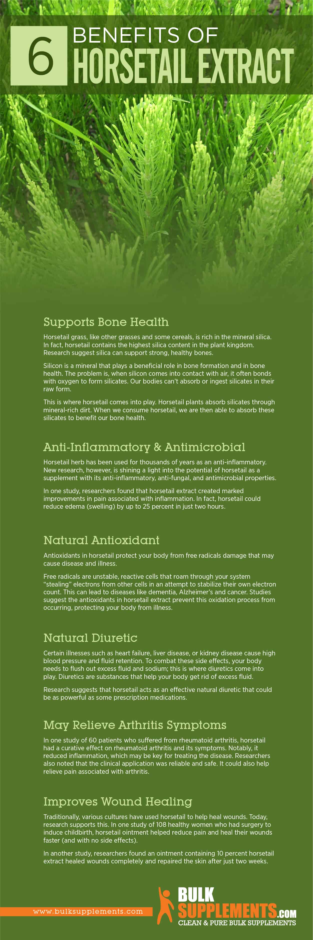 Horsetail Extract Benefits
