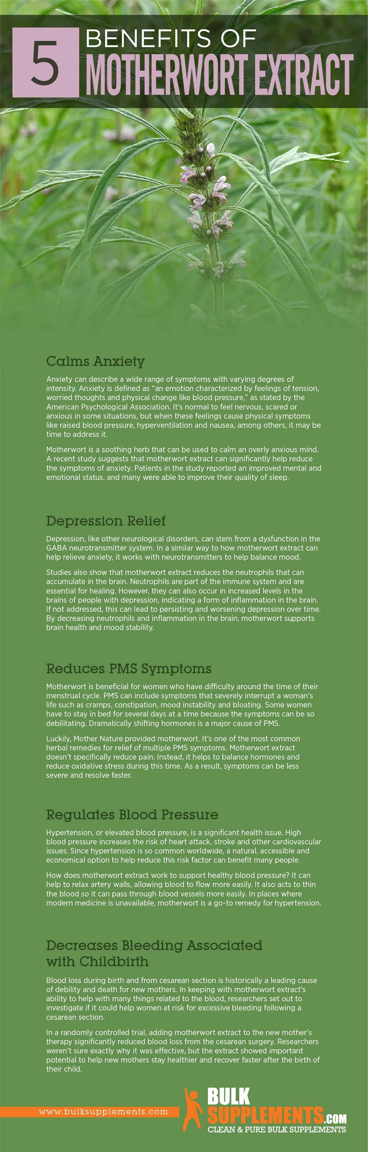 Motherwort Extract Benefits