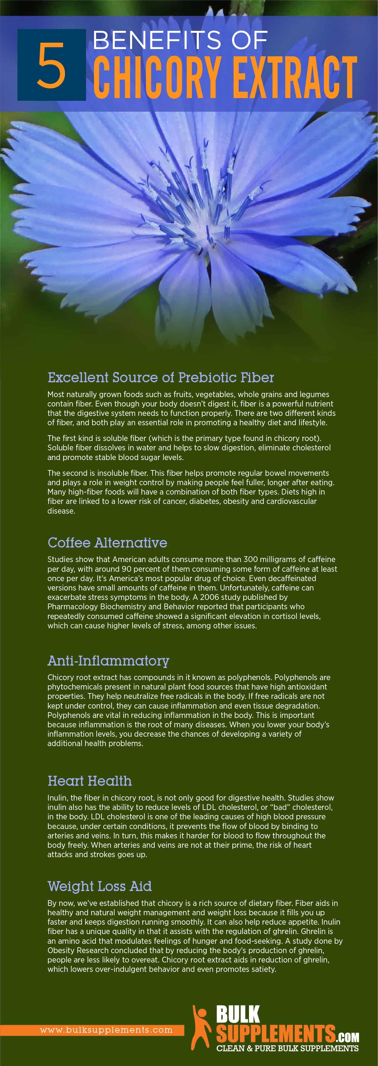 Chicory Extract Benefits