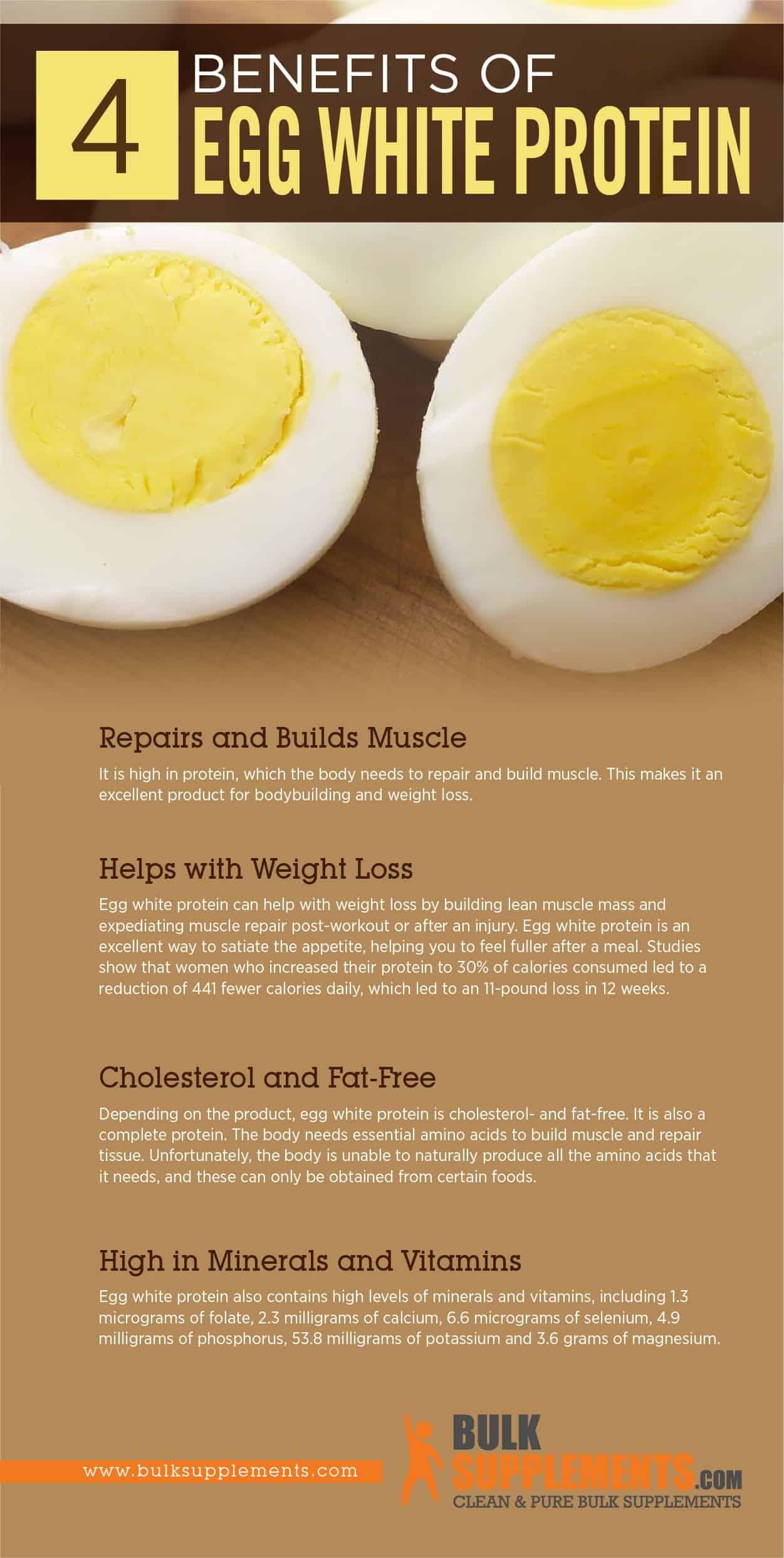 Egg White Protein Benefits