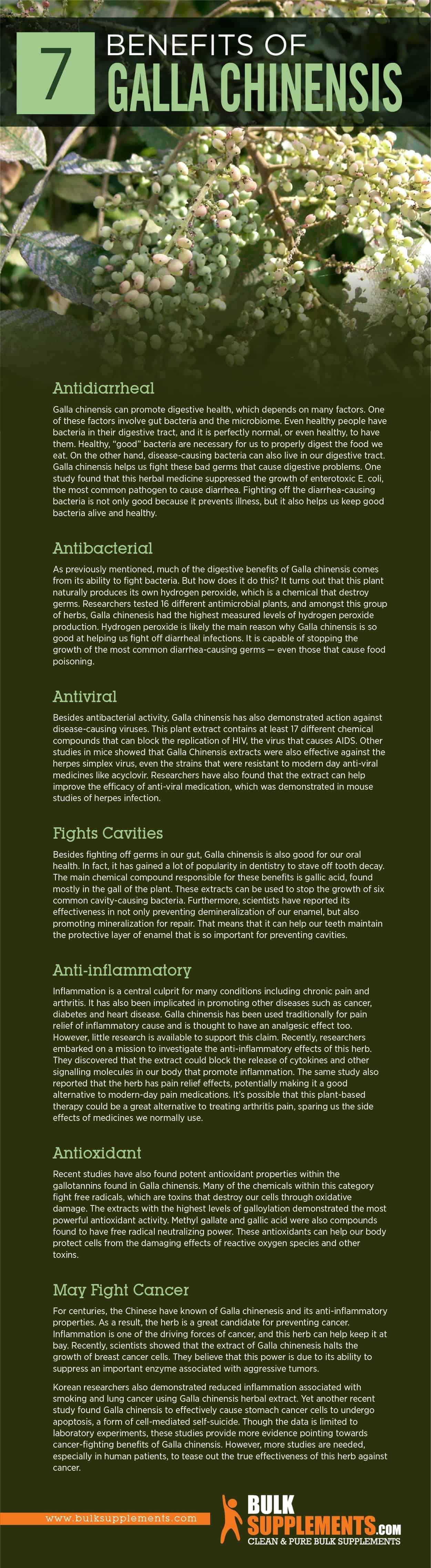 Galla Chinensis Benefits