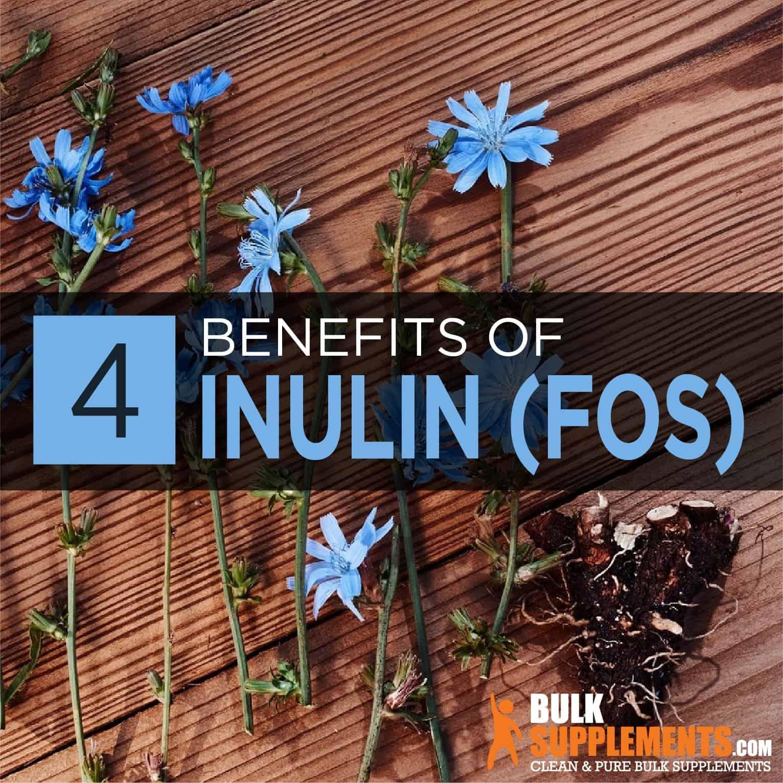 Inulin (FOS)