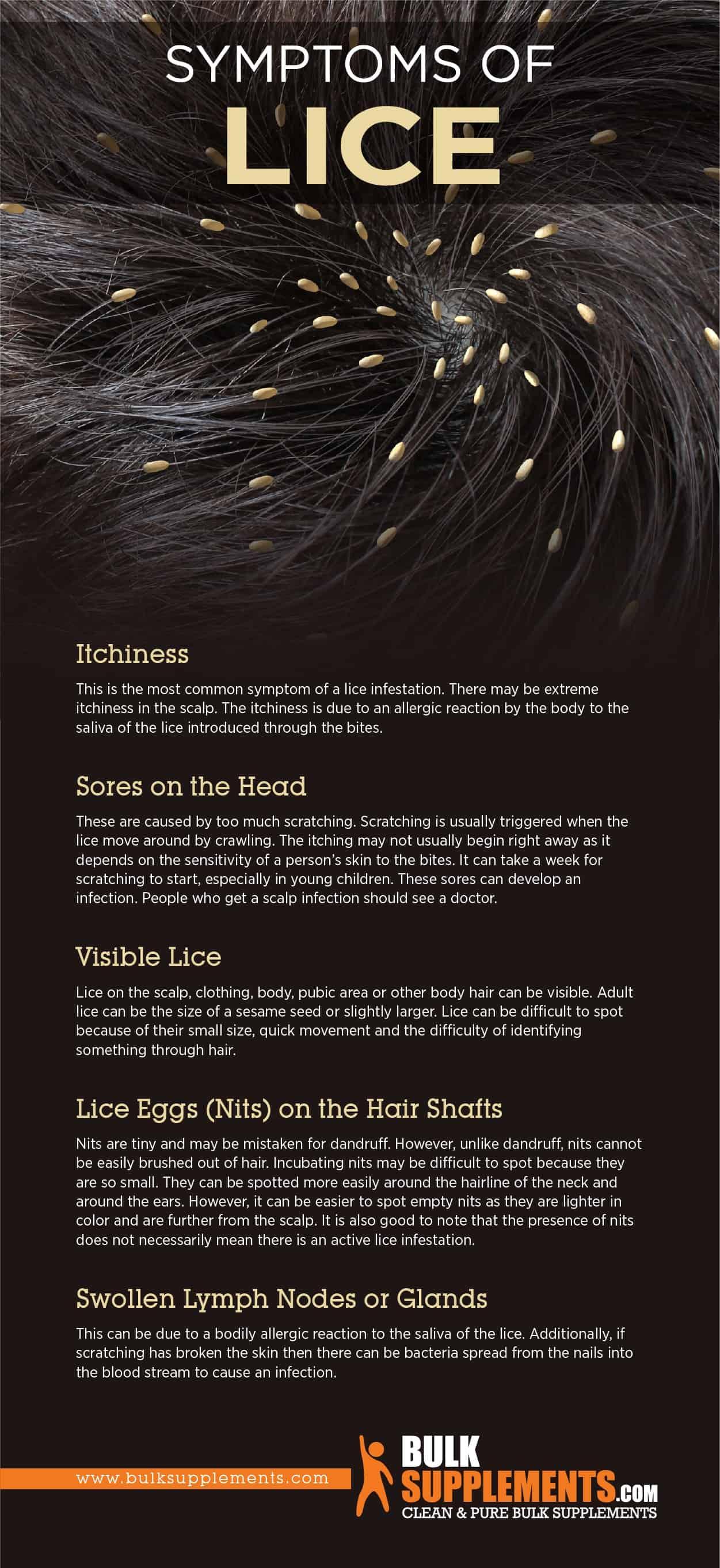 Symptoms of Lice